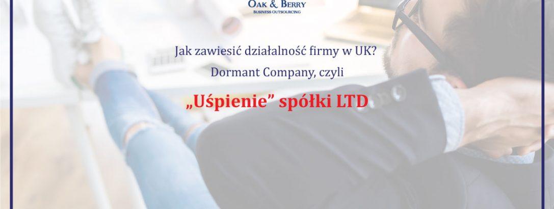 Uśpienie spółki LTD. Co to jest dormant company?